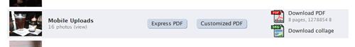 PDFとコラージュ画像